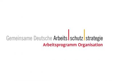 GDA Gemeinsame Deutsche Arbeitsschutzstrategie GDA-Arbeitsprogramm Organisation